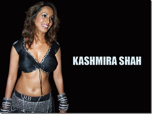 Kashmira_Shah_034 sexy photo wallpapers